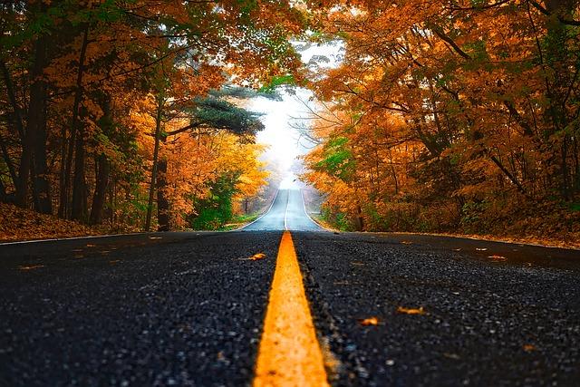 Sicher mit dem Motorrad durch den Herbst